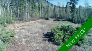 Blaeberry Valley  Vacant Lot for sale: